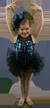 Dance Class Software